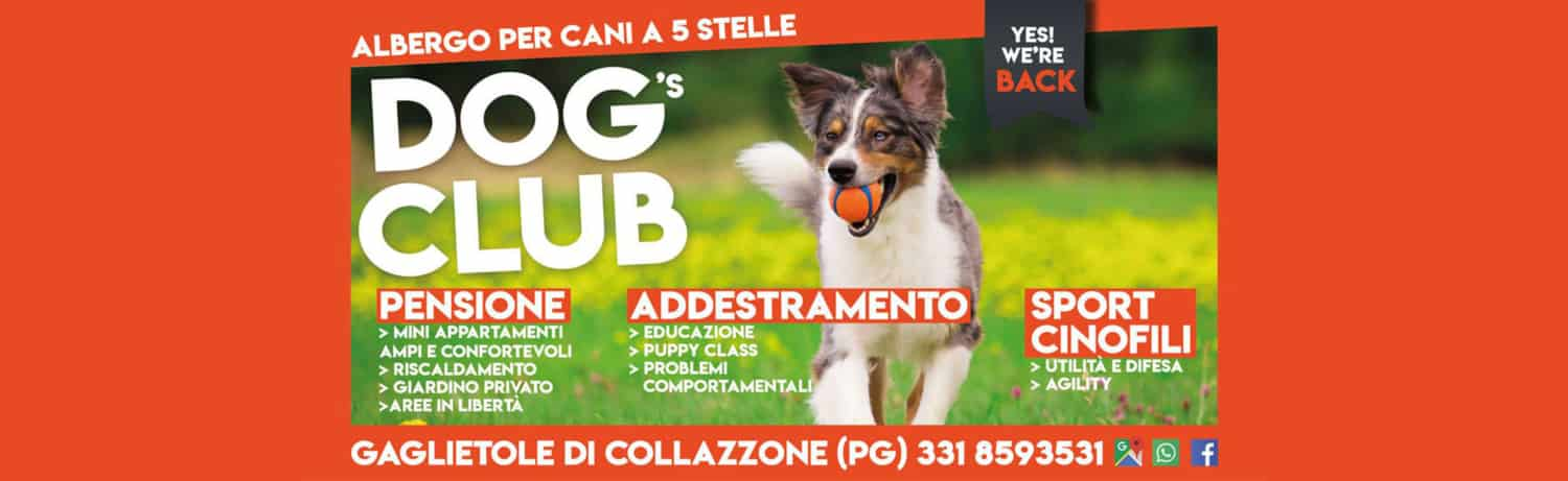 Dog's Club Umbria - We are Back!